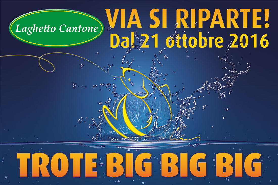Immissione di trote Big