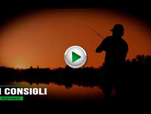 Tecniche di pesca