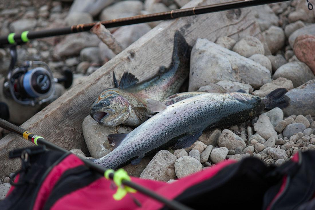 Giornata di Pesca al Lago Cantone